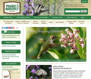 prairie-nursery-website-launch